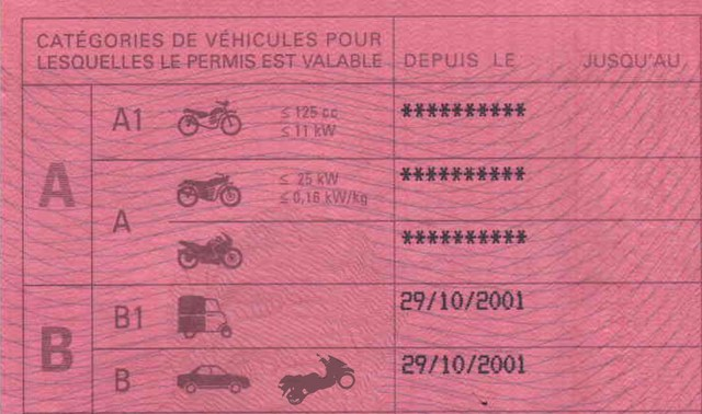permis  u00e0 point archives